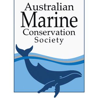 Marine-Whale-Logo